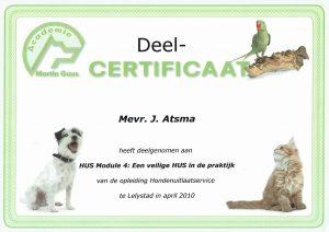 Veilige hondenuitlaatservice in de praktijk