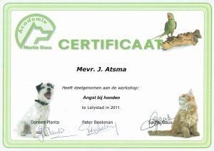 Workshop Angst bij honden